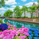 日本最多1,250品種のあじさいがヨーロッパの街並みを彩るイベント「ハウステンボス」で開催!