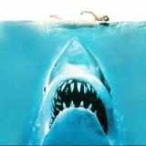 Jaws' kabu