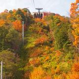 近江八幡~彦根城へ 紅葉を見に行こう!!