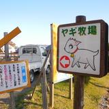 【閉店】ビビッドタウン関ヶ原ヤギ牧場