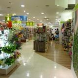 Seria(代官山アドレス・ディセ店)