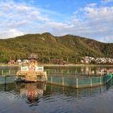 苧ヶ瀬池(おがせ池)