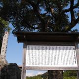 薩摩堤遺跡