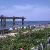 日和浜 新潟市