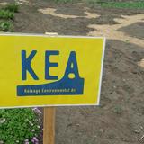 Koisago Enviromental Art 2015(KEA)