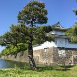 おしゃれにおいしく京都街歩き!京都二条城周辺を半日で楽しみ尽くす、若者向けの京都散策マップ。