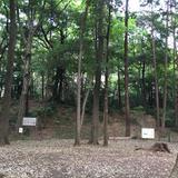 石神井城跡
