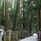 霊験あらたか、高野山と熊野のたび