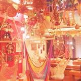 松の木食堂