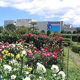 タカナシ乳業(株) 横浜工場