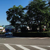 桜ヶ丘ロータリー