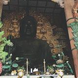 奈良満喫一人旅