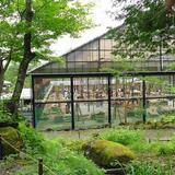 リスの森・飛騨山野草自然庭園