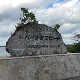 パイナガマ