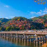 ☘一日京都観光☘嵐山・岡崎