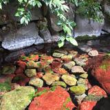 熱田神宮水源