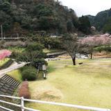 耶馬渓ダムスポーツ公園