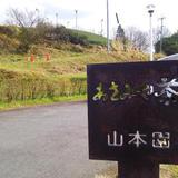 (株)山本園・WITH TEA
