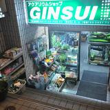 アクアリウムショップ GINSUI