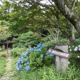 摩耶自然観察園