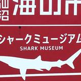 リアスシャークミュージアム