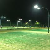 大磯プリンステニスコート
