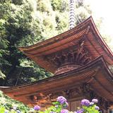 日龍峰寺(高沢観音)