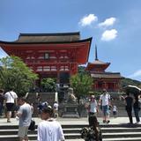 浴衣で京都1日観光    八坂神社〜清水寺〜三十三間堂  美味しいお蕎麦と川床ディナー