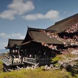 日本大好き卒業旅行