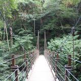 高尾山登山道 吊橋コース
