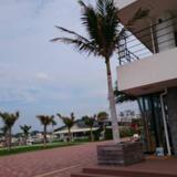 トロピカルビーチ