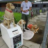 日本盲導犬総合センター