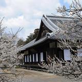 弘道館公園