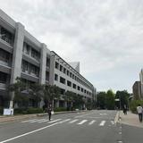 突発香川旅行