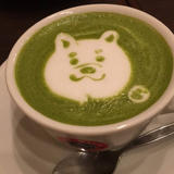 CAFE MARIO CHIFFON カフェマリオシフォン