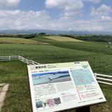 新栄の丘 展望公園