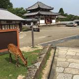 奈良東大寺境四月堂