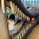 子供遊び場ビックバン