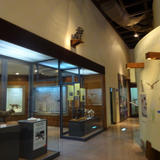 西表野生生物保護センター