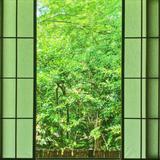 🌿 叡電で巡る 新緑の京都ひとり旅 🌿