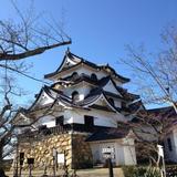 現存12天守の一つ彦根城へ行く
