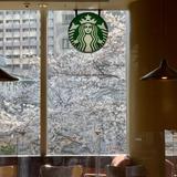 スターバックスコーヒー 愛宕グリーンヒルズ店(STARBUCKS COFFEE)