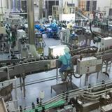 小正醸造焼酎工場見学