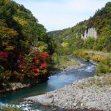 大雪山方面で紅葉を楽しむ秋の観光コース