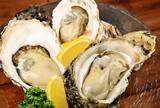 尾道WHARF(ワーフ)|牡蠣|レストラン|ランチ|ワイン|パーティ