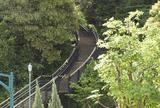 港の見える丘公園(2) フランス山地区の高地部