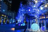 名古屋ルーセントタワーのツリー