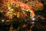秋の夕暮れ鎌倉~江ノ島散策。