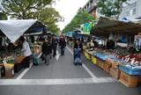 お手軽な日曜日の高知市内観光コース