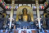もしかして日本一?越前大仏と五重塔を求めて福井勝山へ